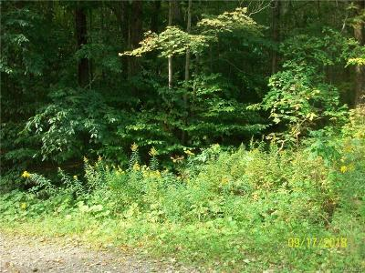 Ellicottville Residential Lots & Land A-Active: Woodard Road