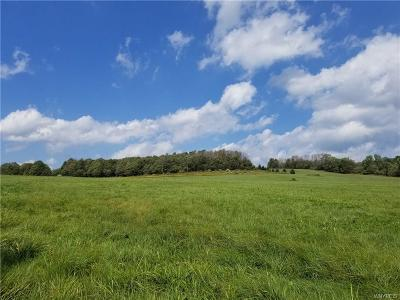 Ellicottville Residential Lots & Land A-Active: 7010 High Meadows
