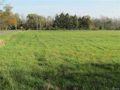 Residential Lots & Land For Sale: Lakeshore Road