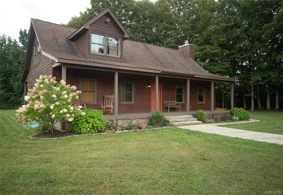 Erie County Single Family Home A-Active: 5815 Zoar Valley Road