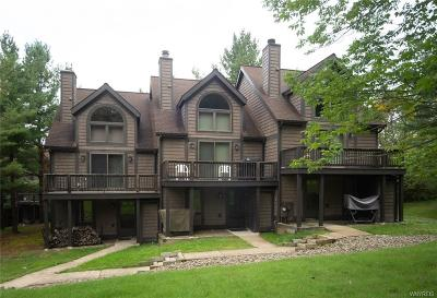 Ellicottville Condo/Townhouse A-Active: 20 Slopeside Road-The Woods