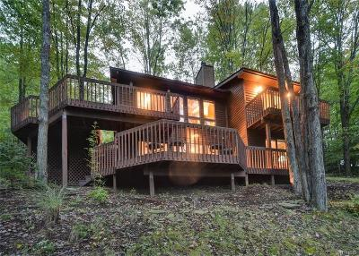 Ellicottville Single Family Home A-Active: 6652 Thistle Road