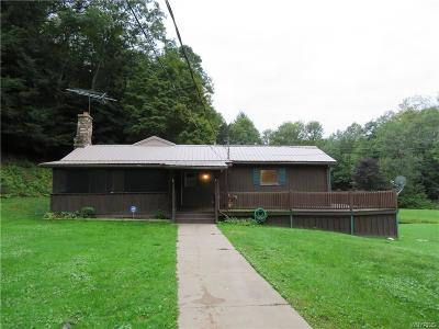 Portville Single Family Home U-Under Contract: 738 Butternut Brook Road