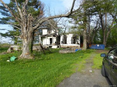 Orleans County Single Family Home A-Active: 15541 Roosevelt Hwhy. Highway