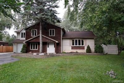 Lewiston NY Single Family Home A-Active: $259,900