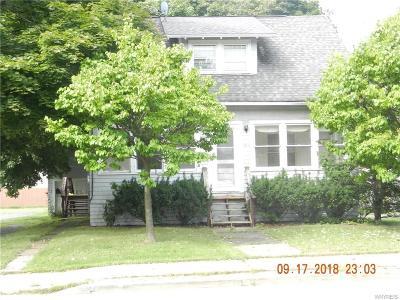 Hamburg Single Family Home A-Active: 192 Lake Street