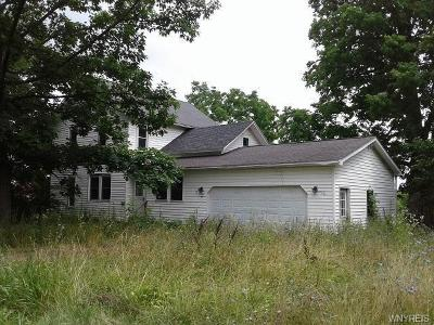 Orleans County Single Family Home A-Active: 2519 Townline Road