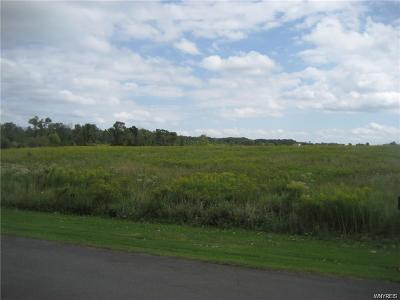 Orchard Park Residential Lots & Land A-Active: Angle Road