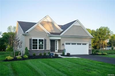 Niagara County Single Family Home A-Active: Sl#127 Beach Drive