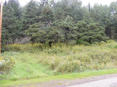 Ellicottville Residential Lots & Land A-Active: 8141 Irish Hill Road