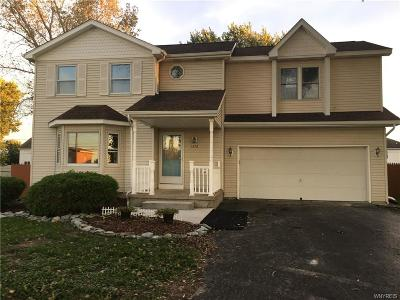 Grand Island Single Family Home A-Active: 1376 Ransom Road