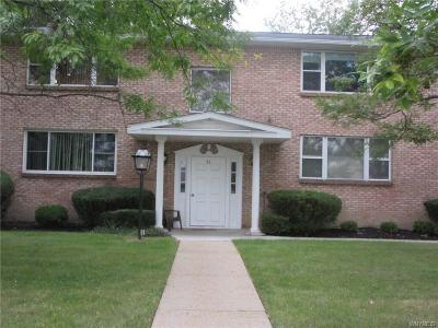 Amherst Condo/Townhouse A-Active: 36 Old Lyme Drive #1