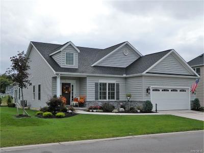 Single Family Home A-Active: 9073 Bancroft Drive