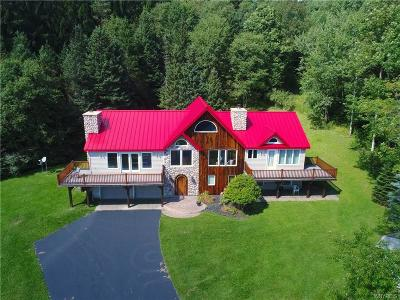 Ellicottville Single Family Home A-Active: 6590 Plum Creek Road