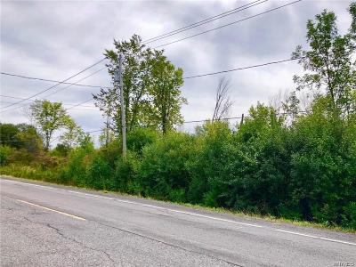 Grand Island Residential Lots & Land A-Active: 2450 Love Road