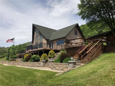 Allegany County, Cattaraugus County Single Family Home A-Active: 6494 Route 16
