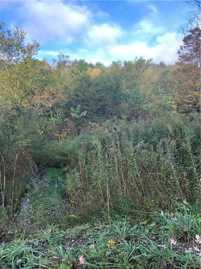 Allegany County, Cattaraugus County Residential Lots & Land A-Active: Lot 4 Plum Brook Road