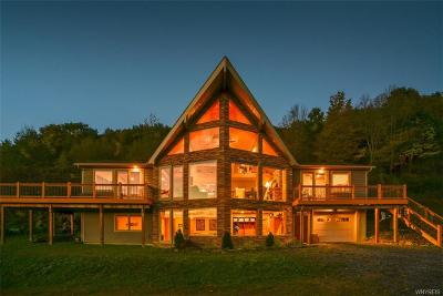 Ellicottville Single Family Home A-Active: 6244 Sugartown Road