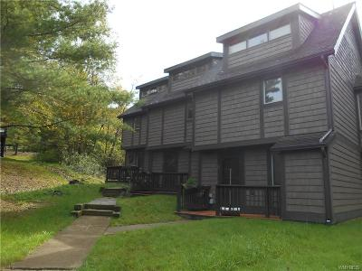 Ellicottville Condo/Townhouse A-Active: 9 Centerline Rd-The Woods