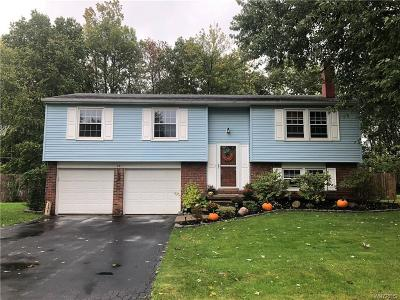 West Seneca Single Family Home A-Active: 131 Garry Drive