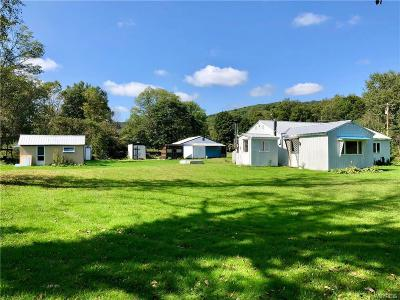 Allegany County, Cattaraugus County Single Family Home A-Active: 8797 Sawmill Run Road