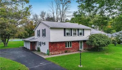 Amherst Single Family Home U-Under Contract: 520 North Ellicott Creek Road