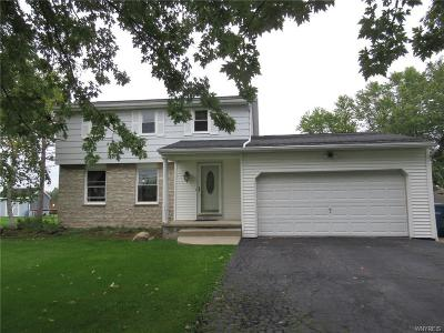 Grand Island Single Family Home A-Active: 1253 Ransom Road
