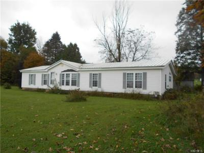 Little Valley Single Family Home U-Under Contract: 9013 New Albion Road