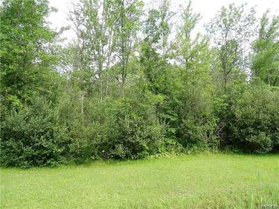 Erie County Residential Lots & Land A-Active: 5250 Millersport Highway