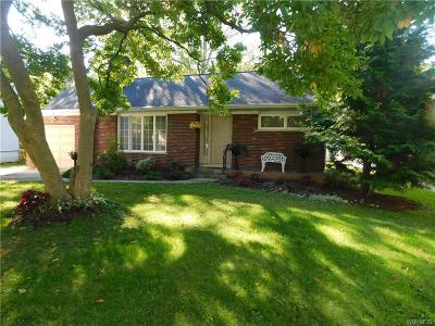 Single Family Home A-Active: 736 Hillview Court