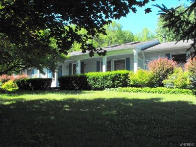 Erie County Single Family Home A-Active: 8014 Zimmerman Road