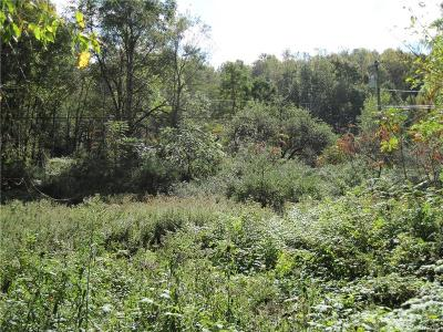 Ellicottville Residential Lots & Land A-Active: Hinman Hollow Road