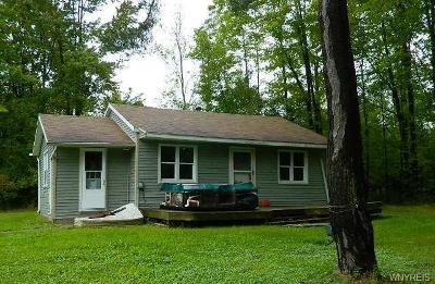 Erie County Single Family Home A-Active: 504 Jefferson Avenue