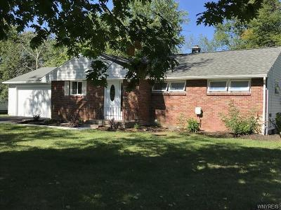 Amherst Single Family Home A-Active: 4371 Beach Ridge Road