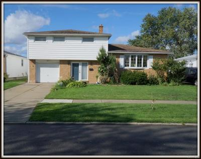 Cheektowaga Single Family Home A-Active: 14 Paula Drive