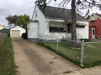 Buffalo Single Family Home A-Active: 116 Albert Avenue