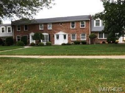 Amherst Condo/Townhouse A-Active: 40 Guilford Lane #D