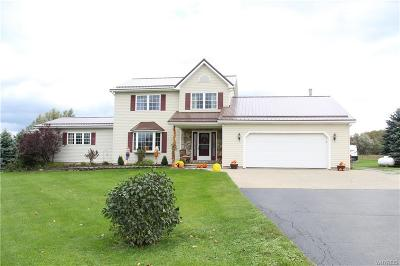 Genesee County Single Family Home A-Active: 11181 Chaddock Road