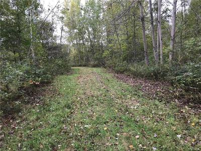 Erie County Residential Lots & Land A-Active: Reservation Road