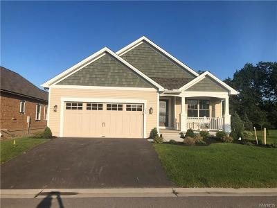 Amherst Single Family Home For Sale: 224 Northill Drive