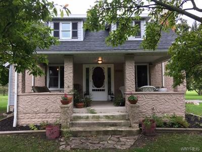 Lewiston NY Single Family Home A-Active: $180,000