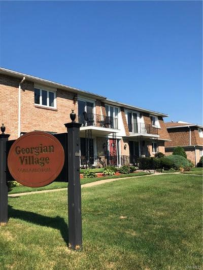 Amherst Condo/Townhouse A-Active: 90 Old Lyme Drive #8