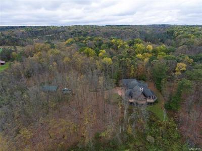 Orleans County, Monroe County, Niagara County, Erie County Single Family Home A-Active: 5140 Merlau Road