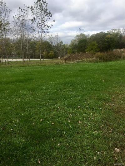 Buffalo Residential Lots & Land A-Active: 4400 Seneca Street