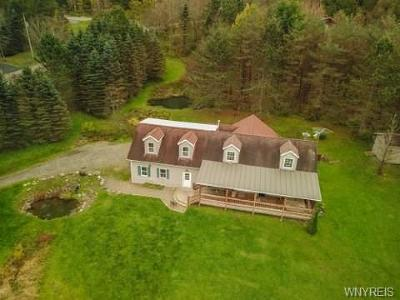Ellicottville Single Family Home A-Active: 12 Dublin Meadows