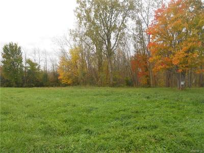 Genesee County Residential Lots & Land A-Active: Vl West Bergen Road