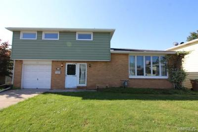 Cheektowaga Single Family Home A-Active: 64 Santin Drive