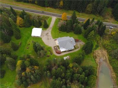 Cattaraugus County Single Family Home For Sale: 6220 Ashford Hollow Road