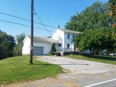 Alexander Single Family Home A-Active: 10162 Goodman Road