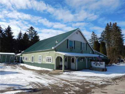 West Valley NY Commercial A-Active: $250,000